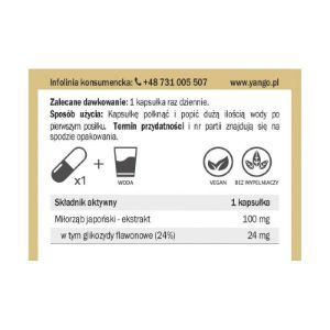 Obrazek Ginkgo biloba - ekstrakt - 90 kapsułek